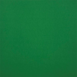 "Cartulina 180 gr. 12"" Grass Green"